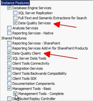 DQS Install File Options
