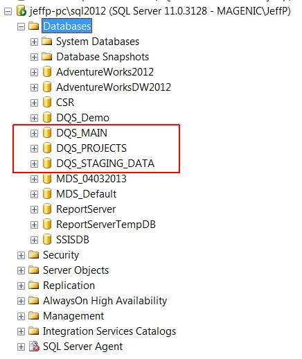 DQS Installed Databases